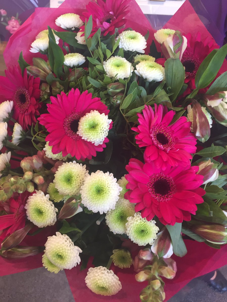 Primrose Court On Twitter The Beautiful Flowers That Have Arrived