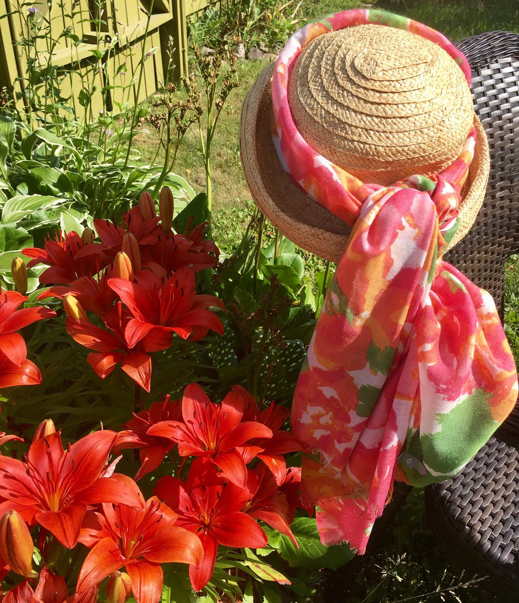 I love to wander in my  garden so sweet ....then sit amongst the lilies  there at my feet  #WaitingForGuests #BeautyDay #ExploreNL #Summer<br>http://pic.twitter.com/X3wRZvhfSO