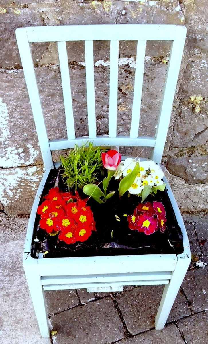 An old unwanted chair which we reused by repurposing into a garden planter. #Reused #Repurposed #Upcycled #gardenplanter<br>http://pic.twitter.com/qrz8vhTfYB