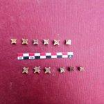#ArqueoBorn17 En el procés d'excavació hem trobat 14 daus d'os i una possible peça d'escacs #RecComtal @arqueologiabcn