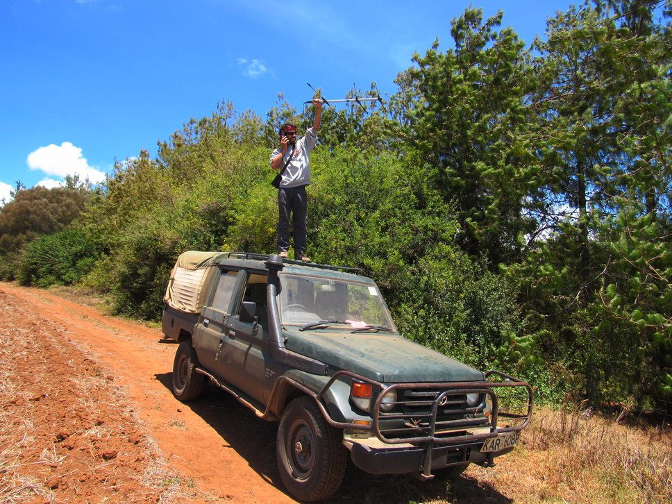 Radio tracking African wild dogs. I know you&#39;re out there somewhere. #Radiotracking #Wildlife #Wilddogs #Mpala #Mp…  http:// ift.tt/2gNyojk  &nbsp;  <br>http://pic.twitter.com/bY9FKvinUo