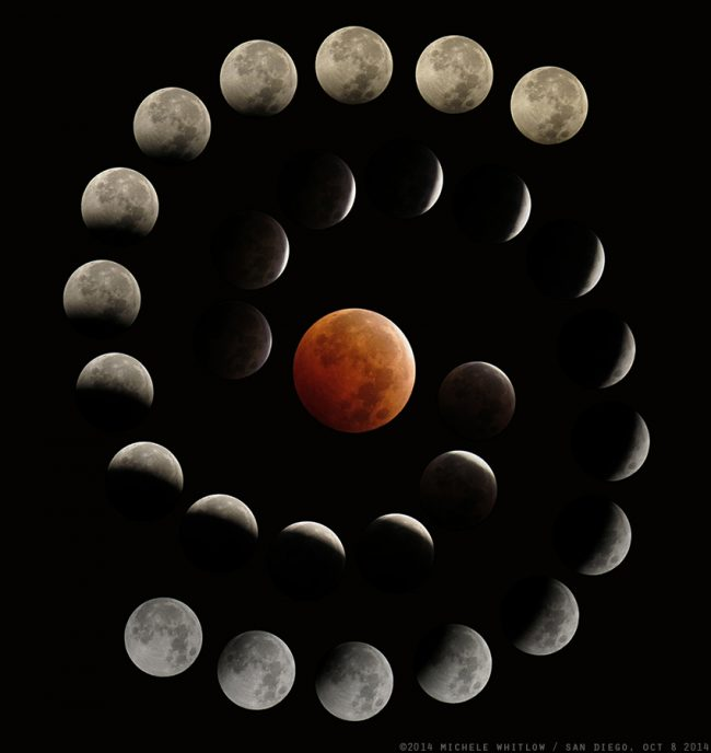 Blood moon by Michelle Whitlow #SPACE #ASTRONOMY <br>http://pic.twitter.com/516MaUCt55