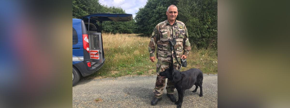 Mayenne : un chauffeur routier signale la présence d'un lion, une quinzaine de gendarmes mobilisés https://t.co/lbcgZO6MKF