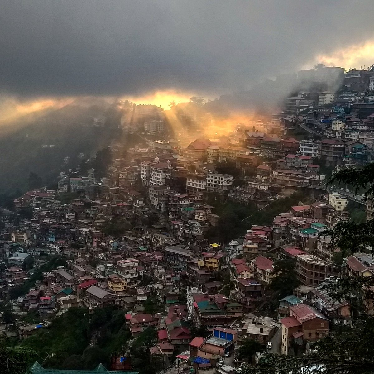 Golden rays from the sky, #Shimla sunset. :) #maproute https://t.co/yAz3jpIMQ2