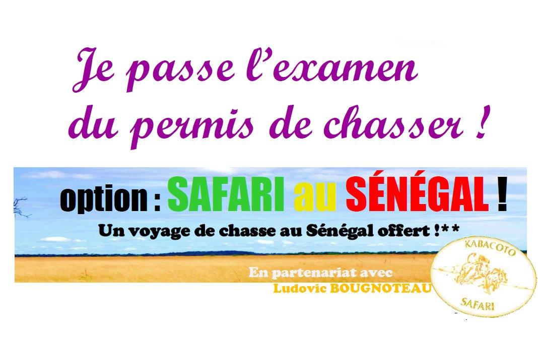 Examen du permis de chasser à 0 €, option safari au Sénégal !