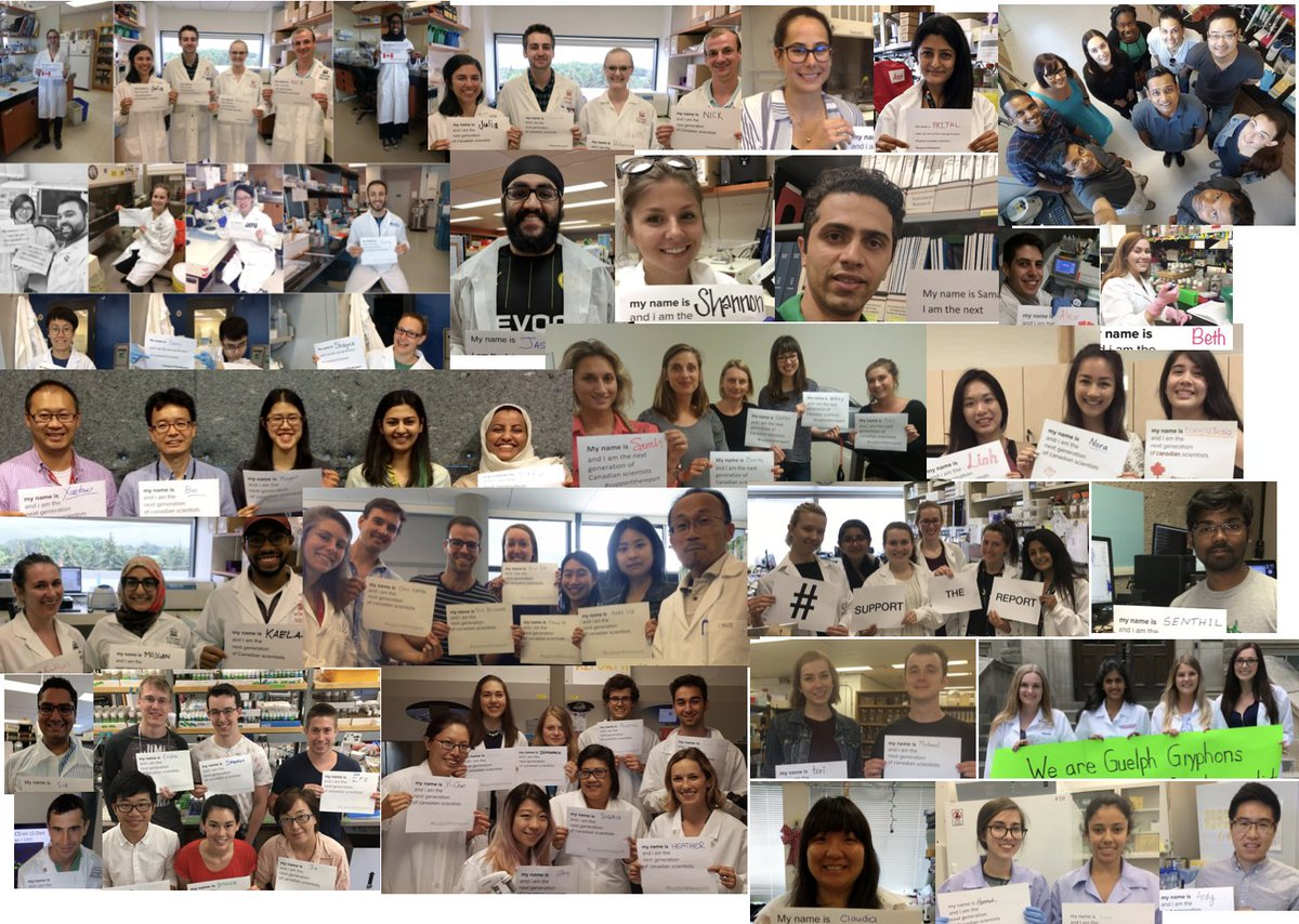 Experimental Group 1: Collage of #Students4theReport #SupportTheReport #NextGenCanScience <br>http://pic.twitter.com/j02dsfLkpl