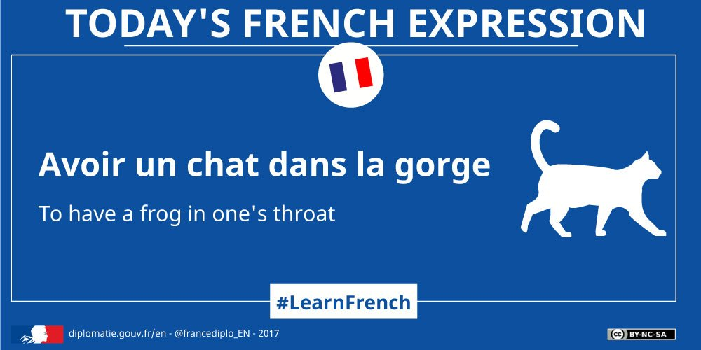 #idioms: When experiencing throat irritation, in French, you have a  - not a  - in your throat! #LearnFrench☞  https:// goo.gl/Qqoki7  &nbsp;  <br>http://pic.twitter.com/Odw6pZpoBe