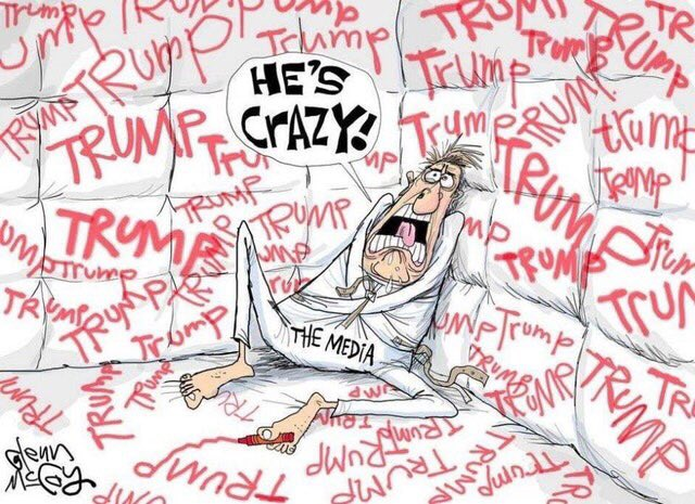 Media in a padded room and straightjacket where it has written Trump everywhere, saying, He's crazy!