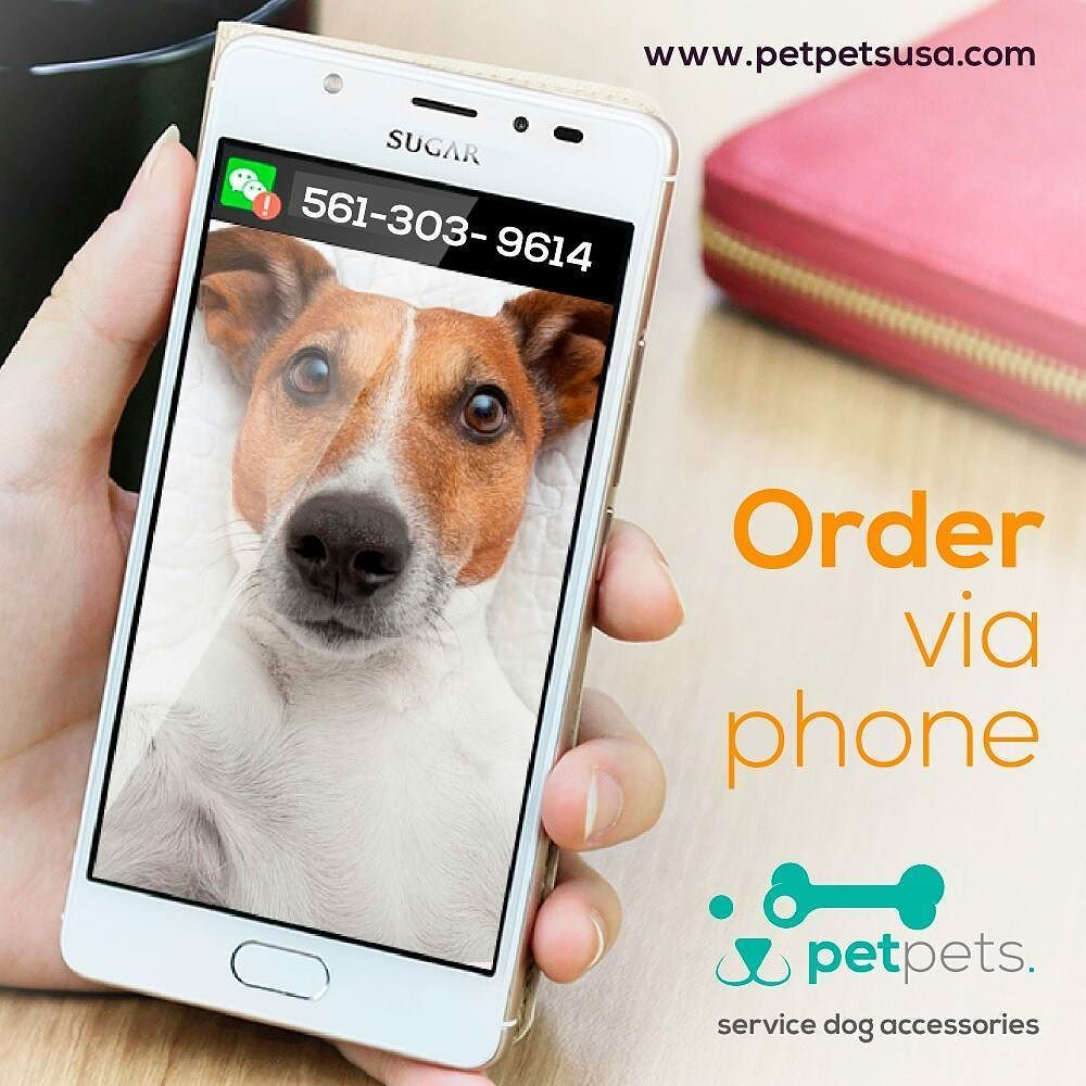 Call 561-303-9614, tell us what you wish and we'll gladly send you your products. #PetPetsUSA . . #PetPets #PetShop #OnlinePetShop #America…<br>http://pic.twitter.com/R0ZB1hbkNy