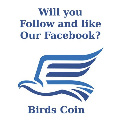 The Birds facebookpage is live. Visit our page:  https://www. facebook.com/Birds-Coin-138 524820062054/ &nbsp; …  #bitcoin, #bitcoins, #facebook #freebtc #Birds #bitcoin #earnmoney <br>http://pic.twitter.com/wYD2HWGmeZ