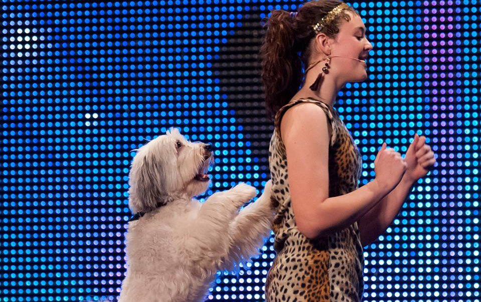 We are saddened to hear that today we lost Pudsey, a most marvellous winner. Our thoughts are with Ashleigh. https://t.co/oe0rJj3Q99