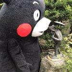 おはくま〜!今日も1日よろしくま☆ pic.twitter.com/hGUc2CViuR