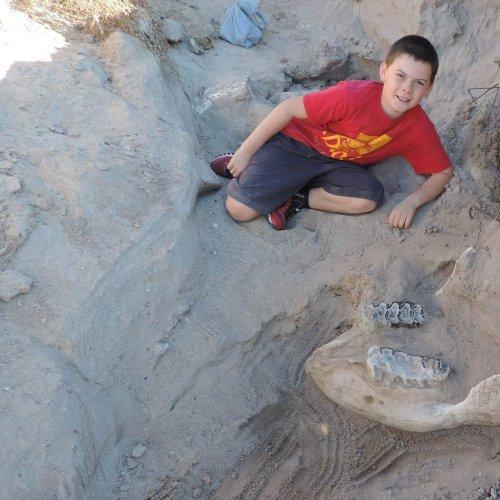 Garoto descobre fóssil de 1,2 milhão de anos https://t.co/LEtRaJjd9T