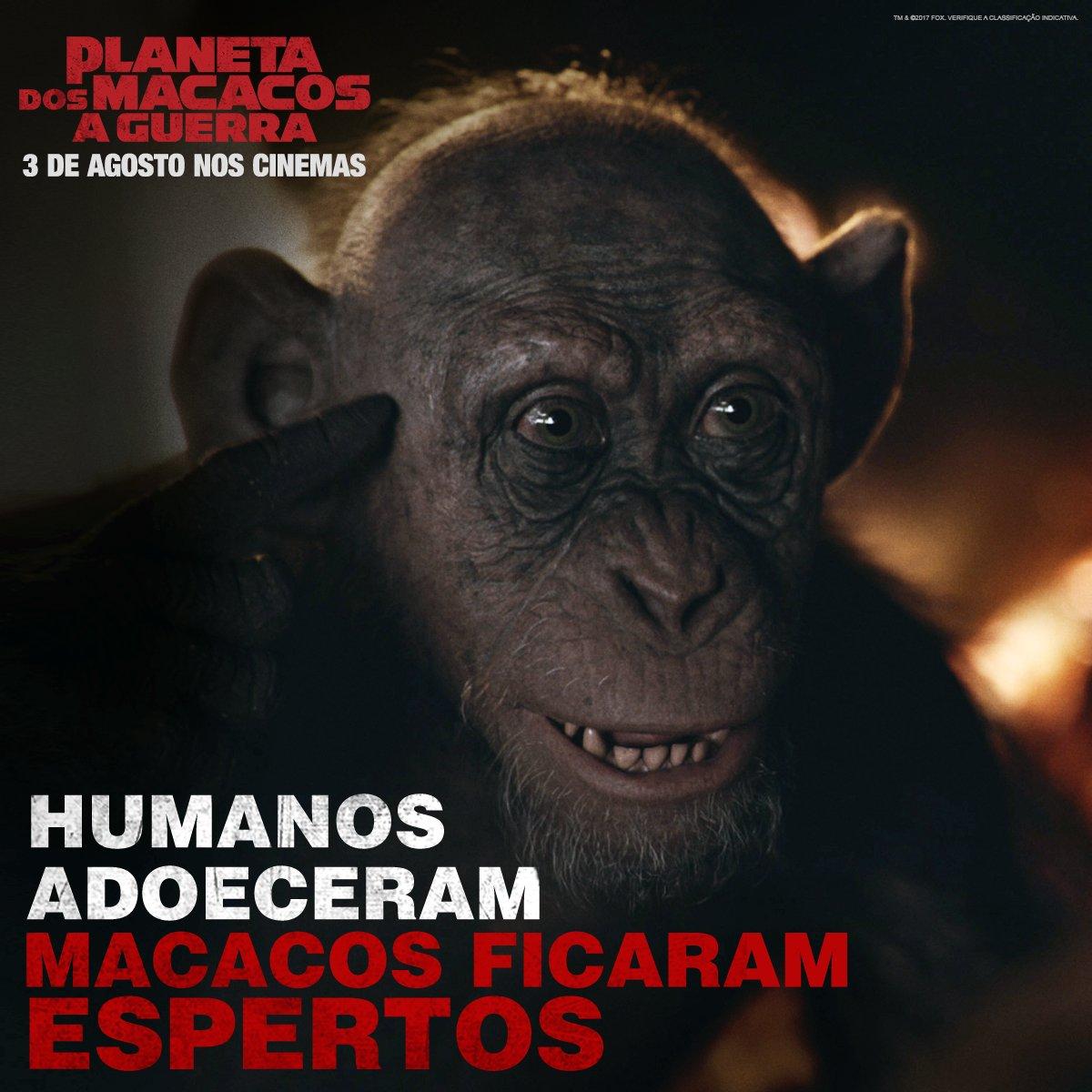 Conheça a história do Macaco Mau, um sobrevivente inesperado em #PlanetaDosMacacosAGuerra, 3 de agosto nos cinemas em 3D.