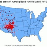 There are two new cases of plague in the US. Here's why it's back https://t.co/BP6sRBoFDp #health