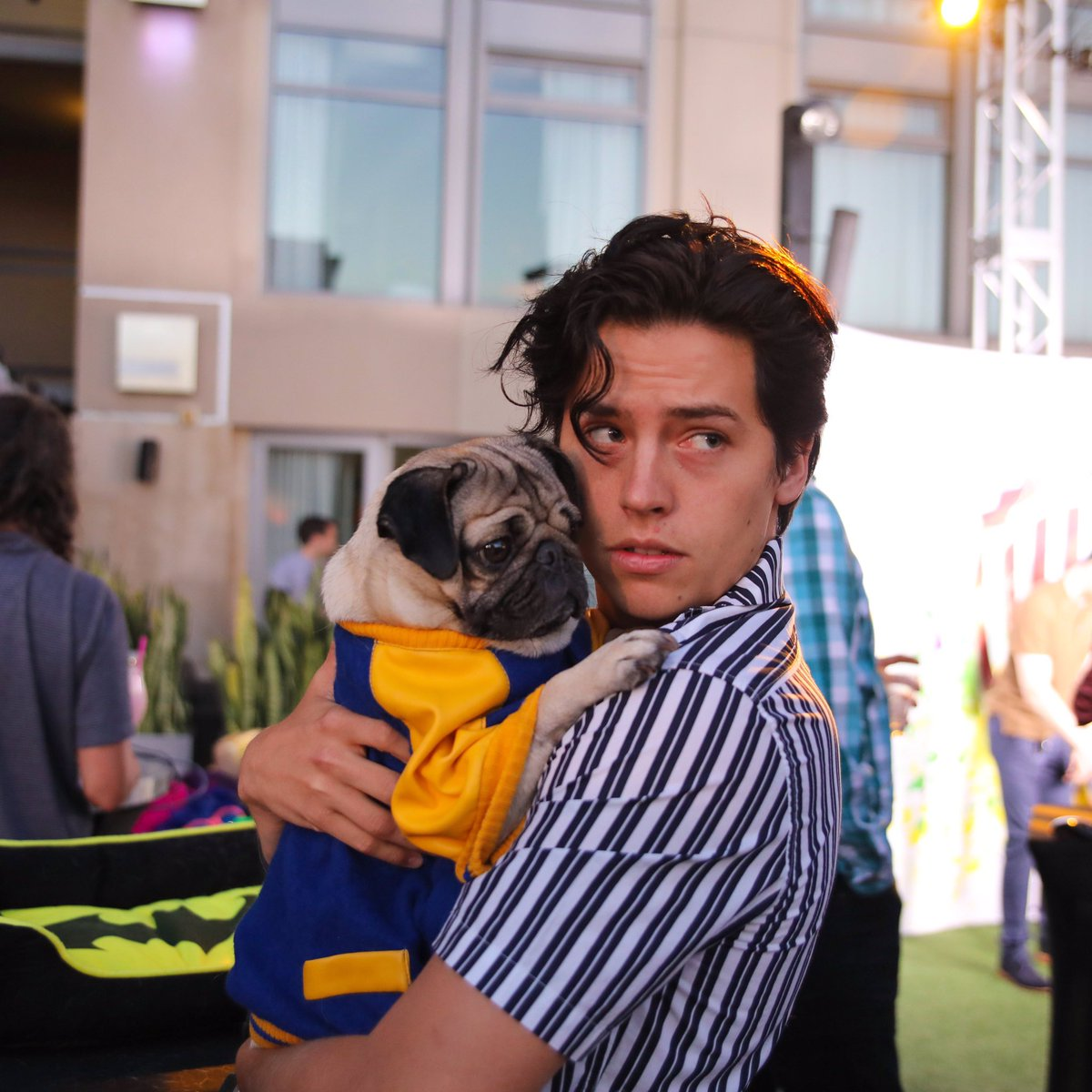 The bromance of our generation @colesprouse