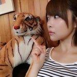 現場に虎。 pic.twitter.com/Dht5AOYQyj