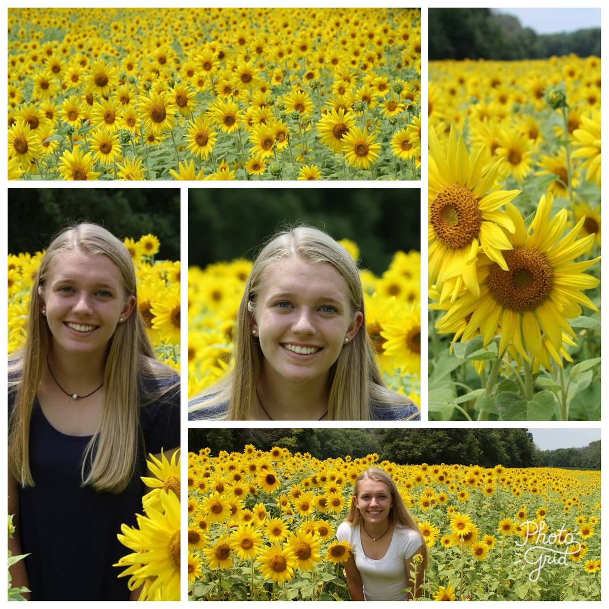 My beautiful girl at McKee-Beshers yesterday @MarylandDNR @amy_nicholson7 #sunflowers #SeniorPictures<br>http://pic.twitter.com/qMsKRQAwxB