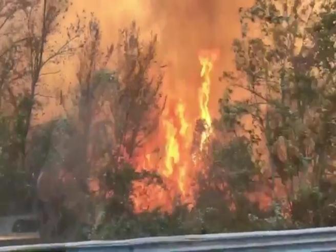 Incendio spaventoso lungo l'A1: chiusa l'autostrada all'altezza di Orte https://t.co/m1qkHzeqYY