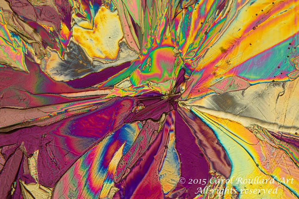 Falling In - Tartaric Acid from Elements in #Wine series #Saturdaymotivation #science #SciArt #interiordesign #homedecor #microscope<br>http://pic.twitter.com/ovSFFQzlzc