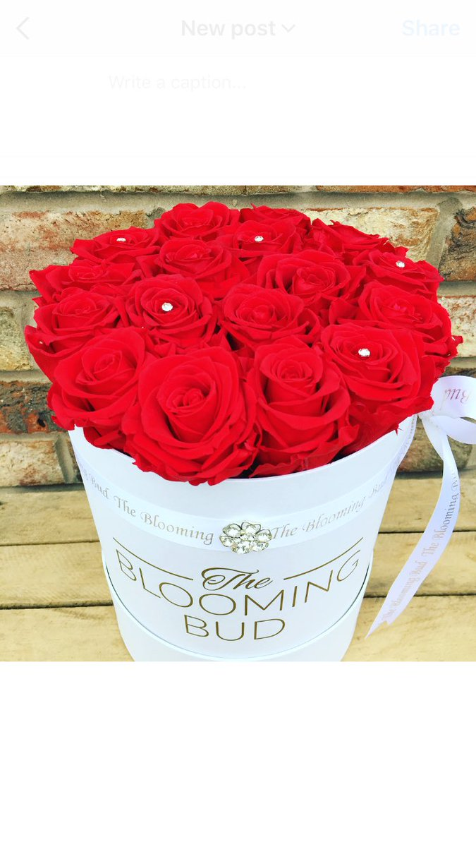 The Blooming Bud On Twitter New Forever Roses Look As Fresh Day There Were Picked Love Beautiful Hatbox Romance