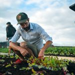 This Canadian supermarket grows organic produce on its own rooftop!  https://t.co/BkJFYStY6f #buylocal