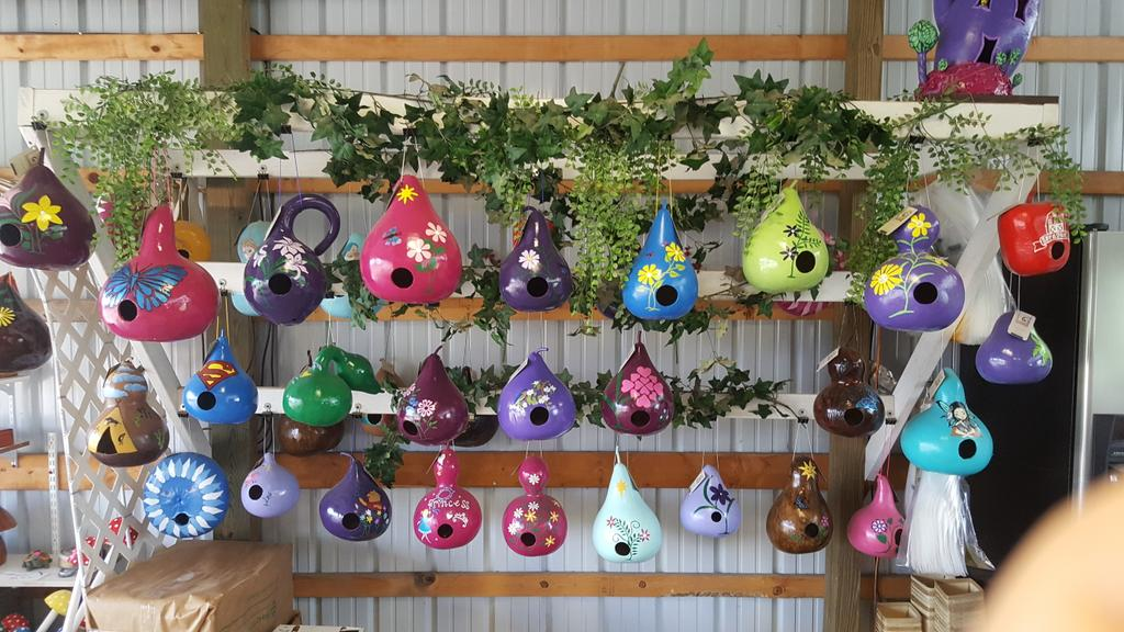 Beautiful #repurposed gourds into #birdhouse @abanajacobs @mr_plantgeek @Manoj_Malde @kgimson @TommyTonsberg @The_RHS @EdHorne3<br>http://pic.twitter.com/tmHzK1z5HF