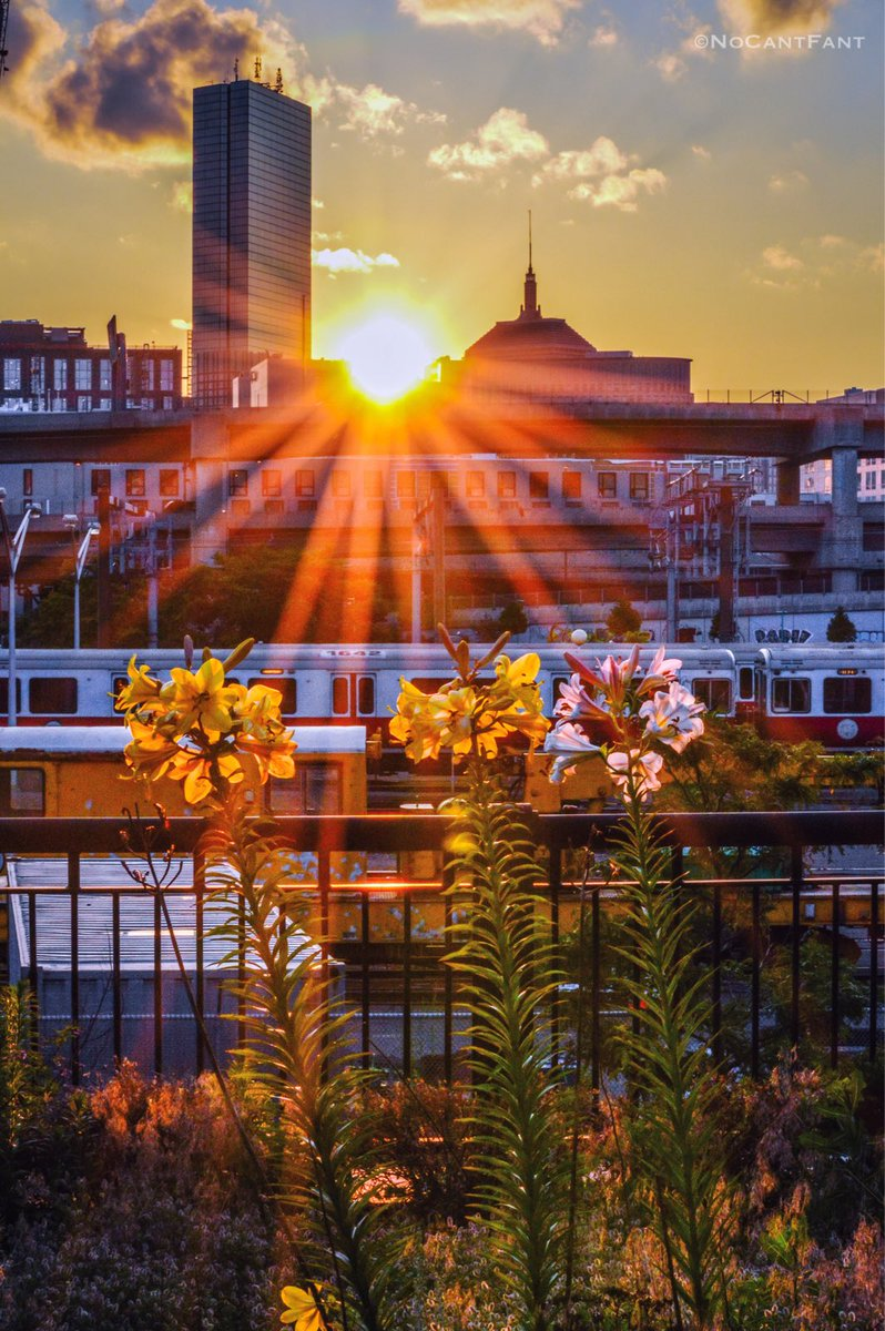 *Boston Ray of Sunshine*Create Your World! #sunshine #nomad #skyline #wanderlust #beautiful #Boston #NoCantFant #Something4thepeople <br>http://pic.twitter.com/z8n79PZn3O