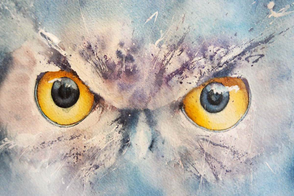 Out of the blue #watercolour #wildlife #owls #thedailysketch #BigArtBoost #birds #wildlifeart #eye #painting #devon #art #wildlifeart #paint<br>http://pic.twitter.com/EWAoFxlzcH