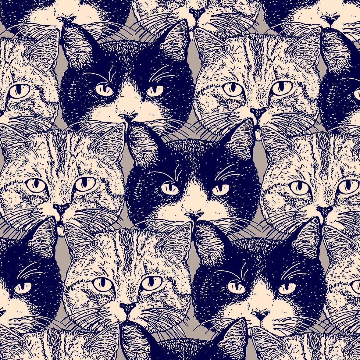 #猫のイラストだけで興味を持ってくれる方へ届け こんな素敵なタグがあったとは! お借りいたします♡ https://t.co/WruDMEU9ZB
