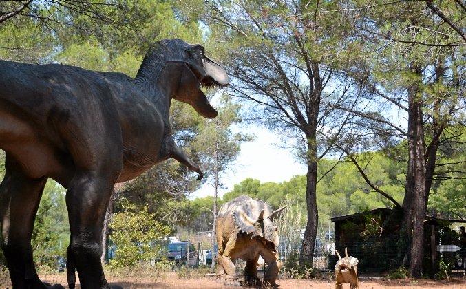 #Herault : toujours plus de visiteurs pour les 20 ans du Jurassic Park mézois https://t.co/EVpdN7AH1U