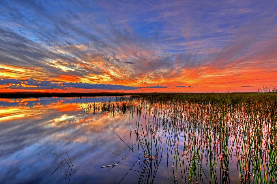 U.S.A.  Land of Freedom  http://www. madein-mycountry.net/en/north-ameri ca/usa/ &nbsp; …  …  #madeinusa,#america,#bestof,#madeinmycountry,#usa ,#visitusa,#florida<br>http://pic.twitter.com/d2DX6x95mQ