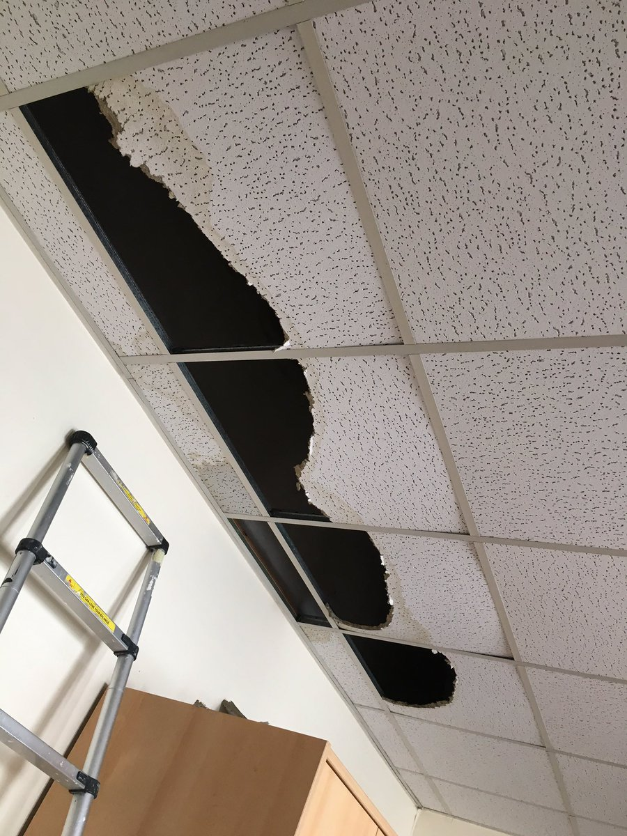 Stephanie jay vespalynd twitter ceiling tile replacement ipbservicespicittercdxhnxncl3 dailygadgetfo Gallery