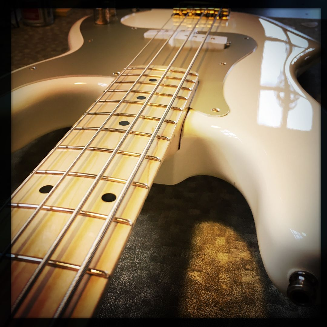 Mr. Goldfinger? Paging Mr. Goldfinger. What better than gold EVO frets on this bass? #guitar #guitarrepair #luthier #bass<br>http://pic.twitter.com/60L15kac8c