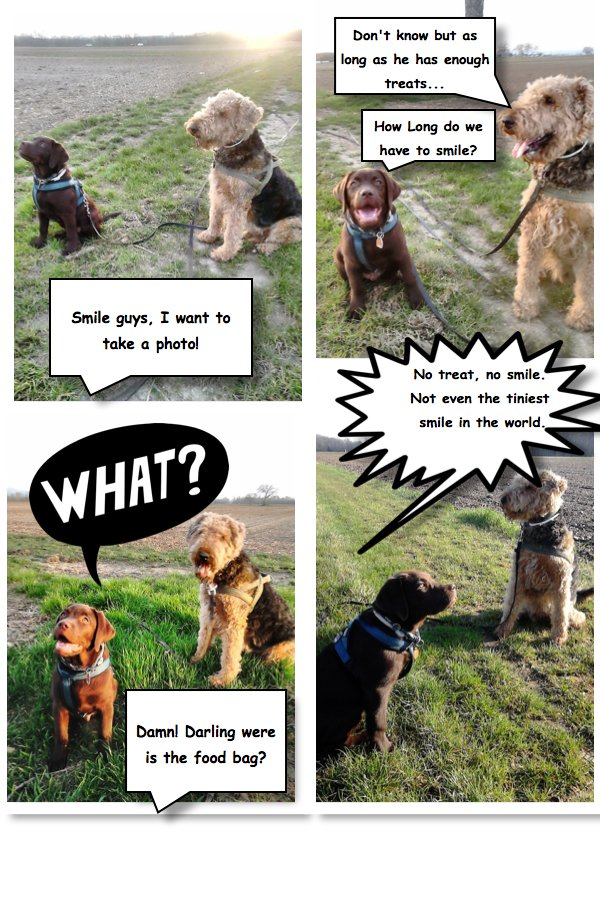 A little Ernie and Berti #comic for you. <br>http://pic.twitter.com/z6bZbMcyMq