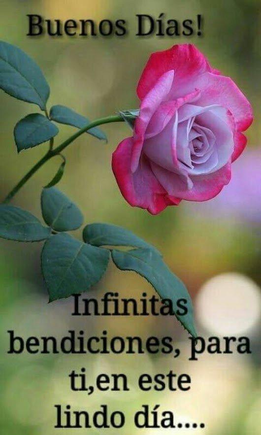 Sueños De Poemas On Twitter Muy Buenos Días Feliz