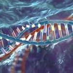 DARPA Awards $65M to Improve Gene-Editing Safety, Accuracy  https://t.co/7fSpCVUjzi?