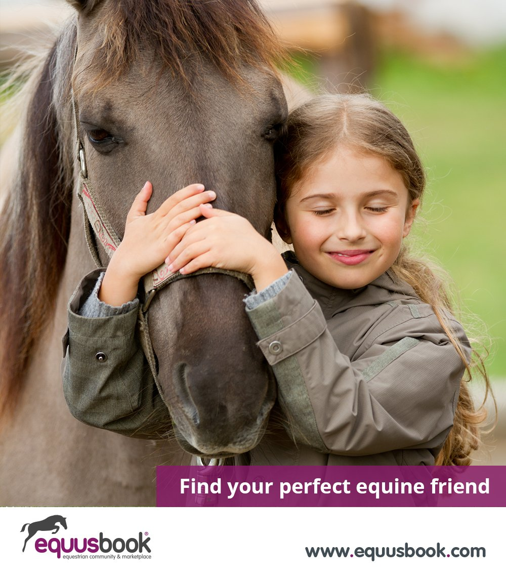 Find your perfect #equine friend  EquusBook® Horses &amp; Ponies for Sale  http://www. equusbook.com  &nbsp;    #EquineHour #horsechathour #ponyhour  UK<br>http://pic.twitter.com/FZoYhTvcc1