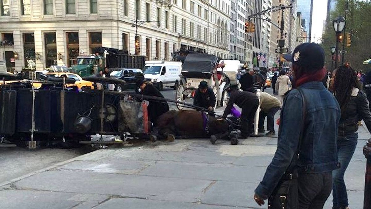 #NYC carriage horses are often double-shifted and have COLLAPSED due to exhaustion. #BanHorseCarriages<br>http://pic.twitter.com/Mgnz9sE6cD