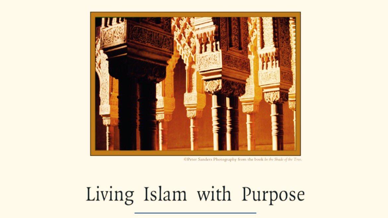 Living #Islam with Purpose   http:// islamhouse.com/en/books/433578  &nbsp;    : #Nigeria #Ghana #southafrica #Uganda #Madagascar #zimbabwe #Malawi #Rwanda #Botswana<br>http://pic.twitter.com/TvHq4pdxPt