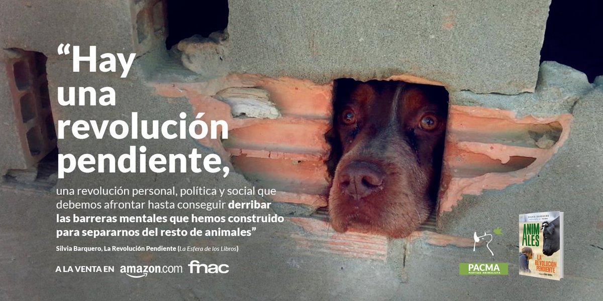 RT @PartidoPACMA: ☕️ ¡Buenos días! #FelizLunes  Hay todavía una revolución pendiente: la defensa de los animales. https://t.co/PAhQIA1A3m