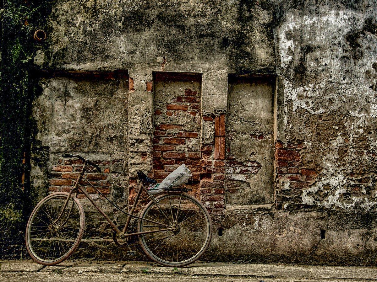 La vida es como montar en bicicleta: para mantener el equilibrio, necesitas seguir moviéndote 🚲#FelizLunes #Bici https://t.co/e0i9k3GjHZ
