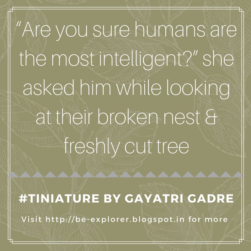 #Tiniature.  To participate- 1.RT 2.reply with ur #TinyStory 3.use #Tiniature #tinystories #microstories #tinytales #amwriting #BeingAuthor https://t.co/SIvtVOgJsp