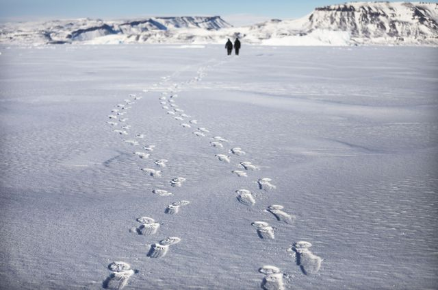#IceMemory ou la collecte d'archives glaciaires destinées à être stockées en Antarctique https://t.co/aEVnWPNTqp cc @Daniel_Fievet