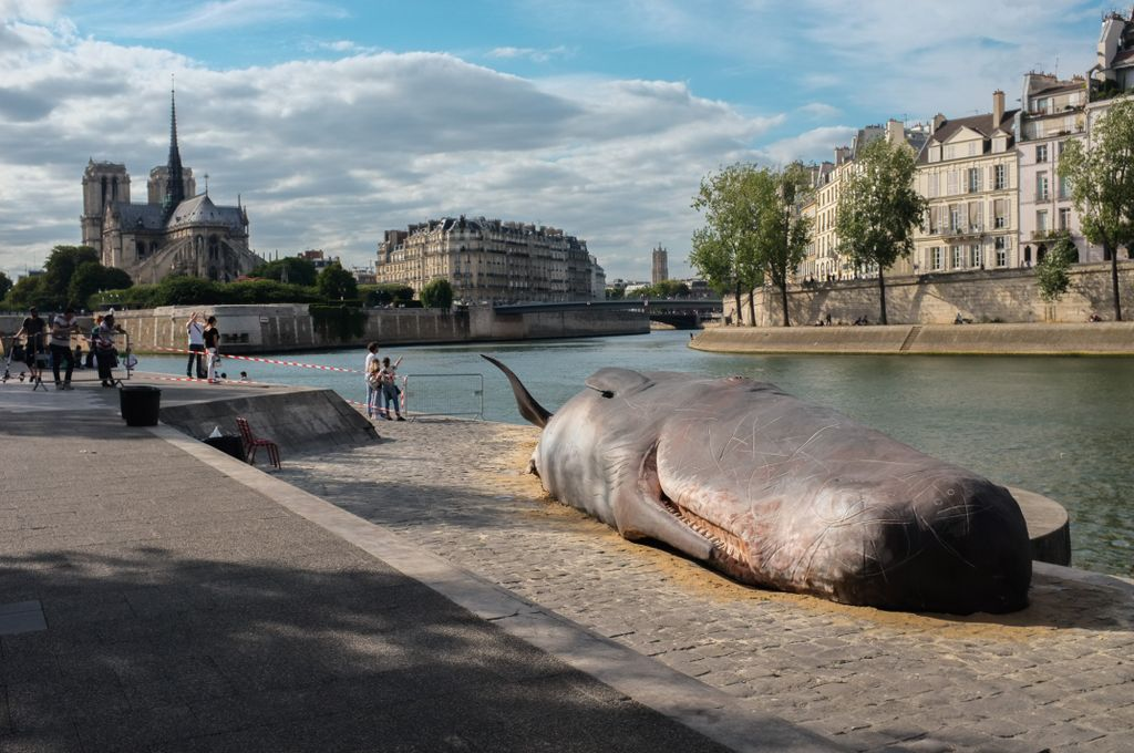 Sperm #Whale washes ashore on Seine in #Paris! Don&#39;t worry it&#39;s an art protest against our polluted #Oceans. Hopefully is will cause action!<br>http://pic.twitter.com/HExS8l7QZ0