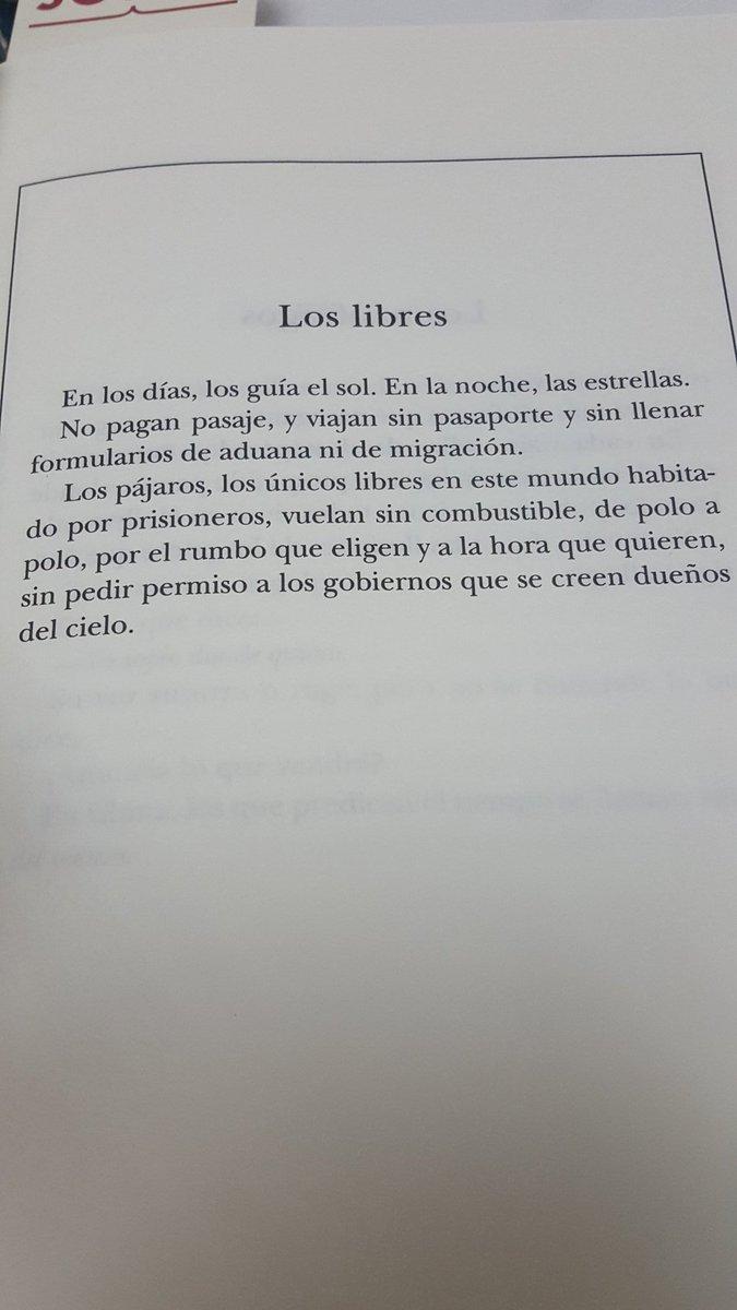 Frases Poéticas On Twitter Los Pájaros Los únicos Libres