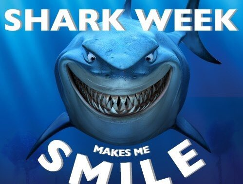 Loved watching our sisters in SSX kill it at Skills Camp this weekend, starting off Shark Week! #CEA #sharkweek #IOC #We&#39;reReady <br>http://pic.twitter.com/ENYkUQBBzx