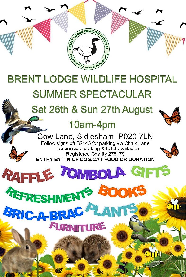 test Twitter Media - We invite you to join us for summer fun on Sat 26 & Sun 27 Aug. Promises to be fun for all the family, help to raise funds for #wildlife https://t.co/yJTq6JBMAf