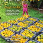 The Kaua'i Master Gardeners' Village Harvest project is the cover story for HMSA's Island Scene summer issue. https://t.co/FkZXl7N9q3