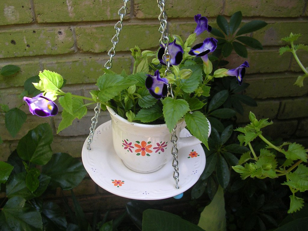 DIY Herb Garden #Planter ... -  http:// garden.viralcreek.com/diy-herb-garde n-planter-using-tea-cup/ &nbsp; …  #CreativePlanter #Repurposed #TeaCupPlanter #Teacup<br>http://pic.twitter.com/cgsjyTEd07